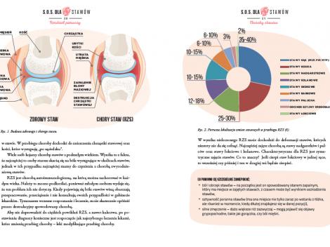 przykladowa strona 2_dieta na choroby stawów